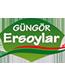 gungor_map