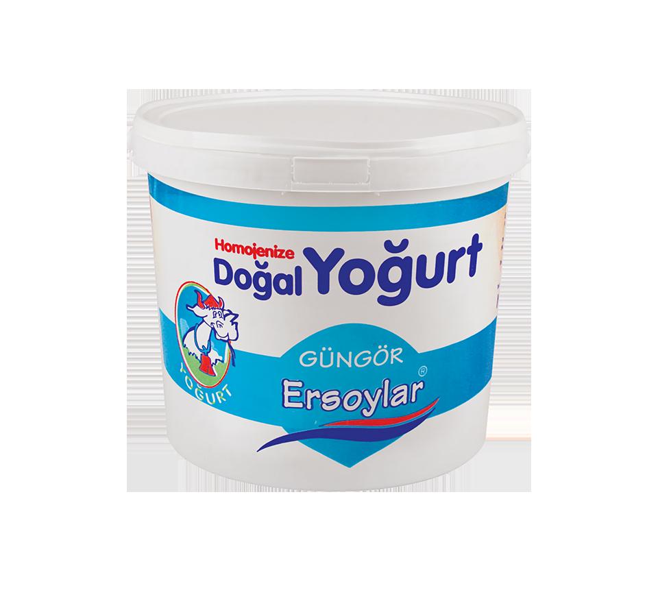 homojonize_dogal_yogurt